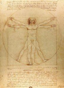 da Vinci - navlen